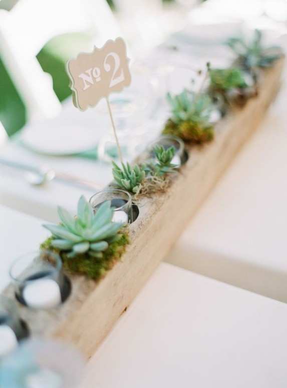 Succulents and candles_Photograph by Lexia Frank Photography.