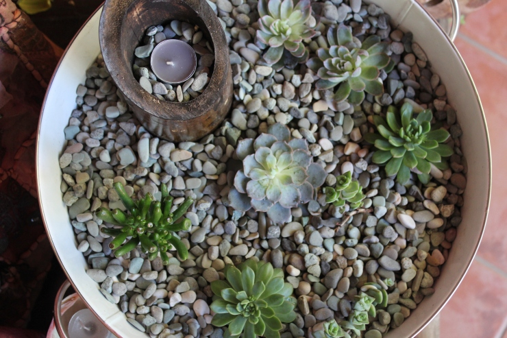 Emma and Grant_real wedding_succulents_diy_stone