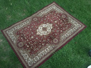 Mid Size red Persian Rug